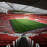 Galeria: Murawa gotowa na Emirates Cup