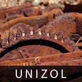 UNIZOL - Ligo-Mistrzowy